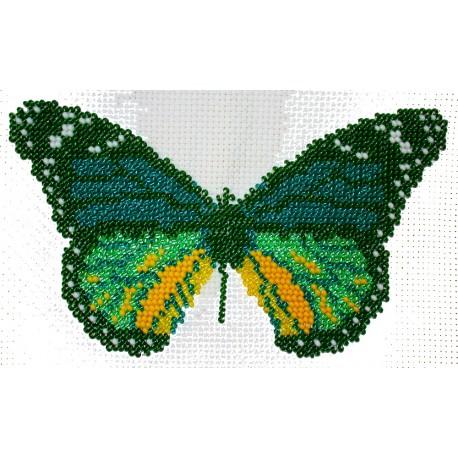 Borduurpakket vlinder groen 12x18cm
