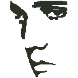 Borduurpakket silhouet Elvis Presley 16x26m.
