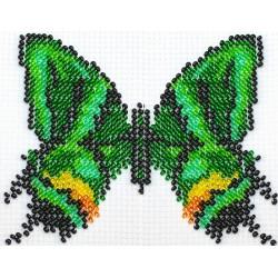 Vlinder multicolor 9x11 cm.