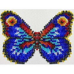 Vlinder multicolor 8x11 cm.