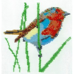 Borduurpakket vogel oranje/blauw/bruin 18x18cm.