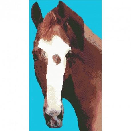 Borduurpakket paardenhoofd 53x30cm