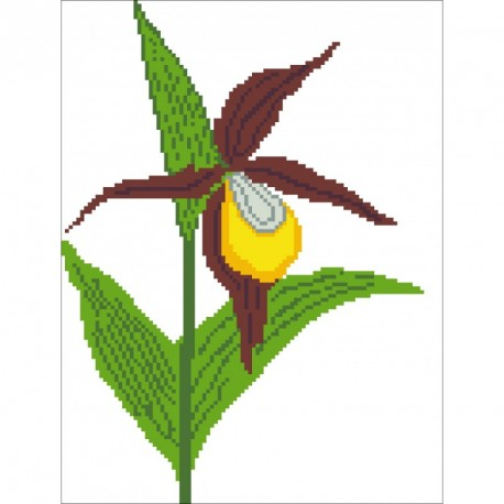 Borduurpakket Cypripedium calceolus 29x22cm