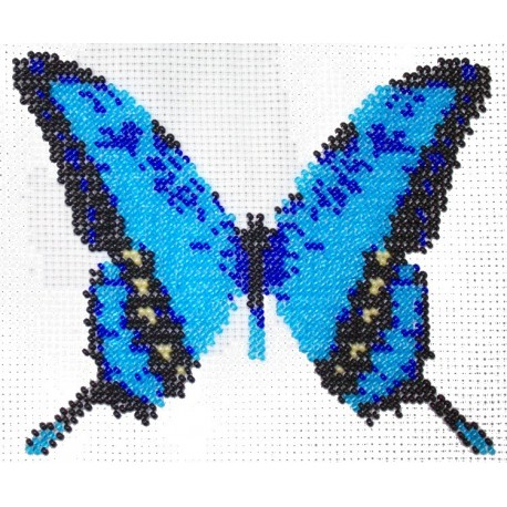 Borduupakket vlinder blauw 13x15cm
