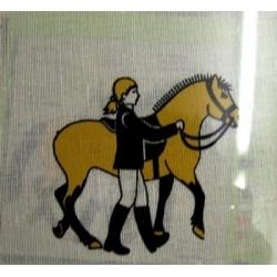 "Borduurpakket Paard leiden"""""