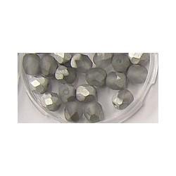 Facetkraal 6mm mat kristal zilvercoating 25st.